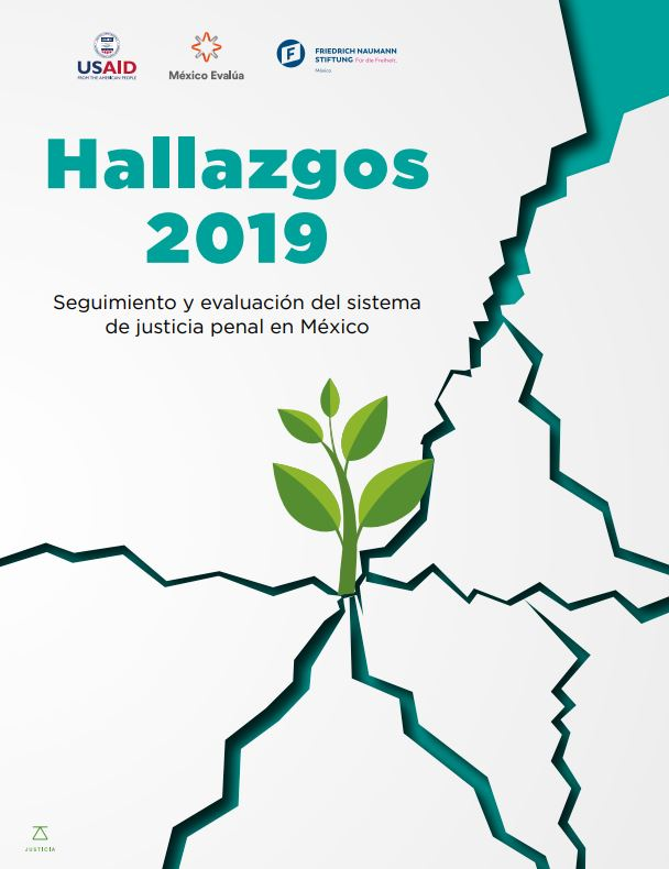Hallazgos 2019