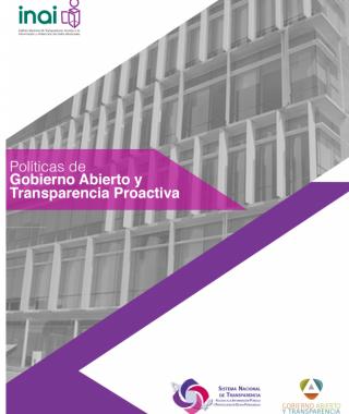 Políticas de Gobierno Abierto y Transparencia Proactiva